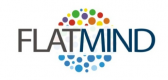Flatmind Technologies Inc.