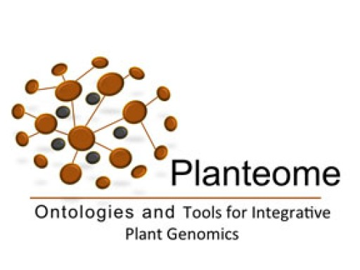 NSF Funds Development of Common Reference Ontologies and Applications for Plant Biology
