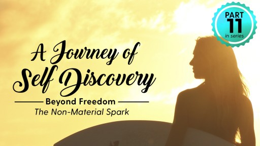 Science of Identity Foundation Releases Video on 'Beyond Freedom' – Press Release