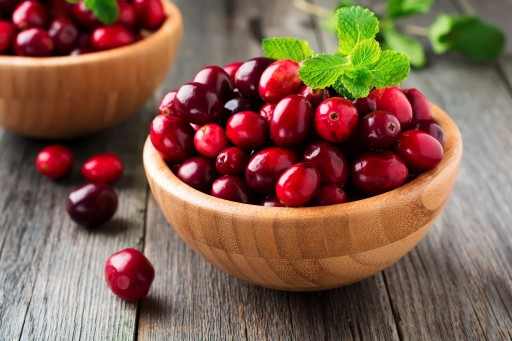 The Sacramento Dentistry Group Talks About Cranberries and Dental Health
