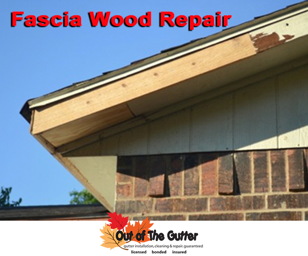 Out Of The Gutter Rain Gutter Installation Contractor