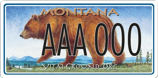 Saving Grizzly Bears, One License Plate at a Time