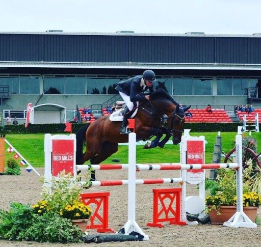All-in-One Leg Support Supplement Premiers at the Royal Dublin Horse Show