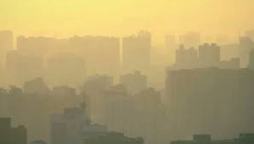 Ashton Whiteley: Steel Output Drops as China Fights Smog
