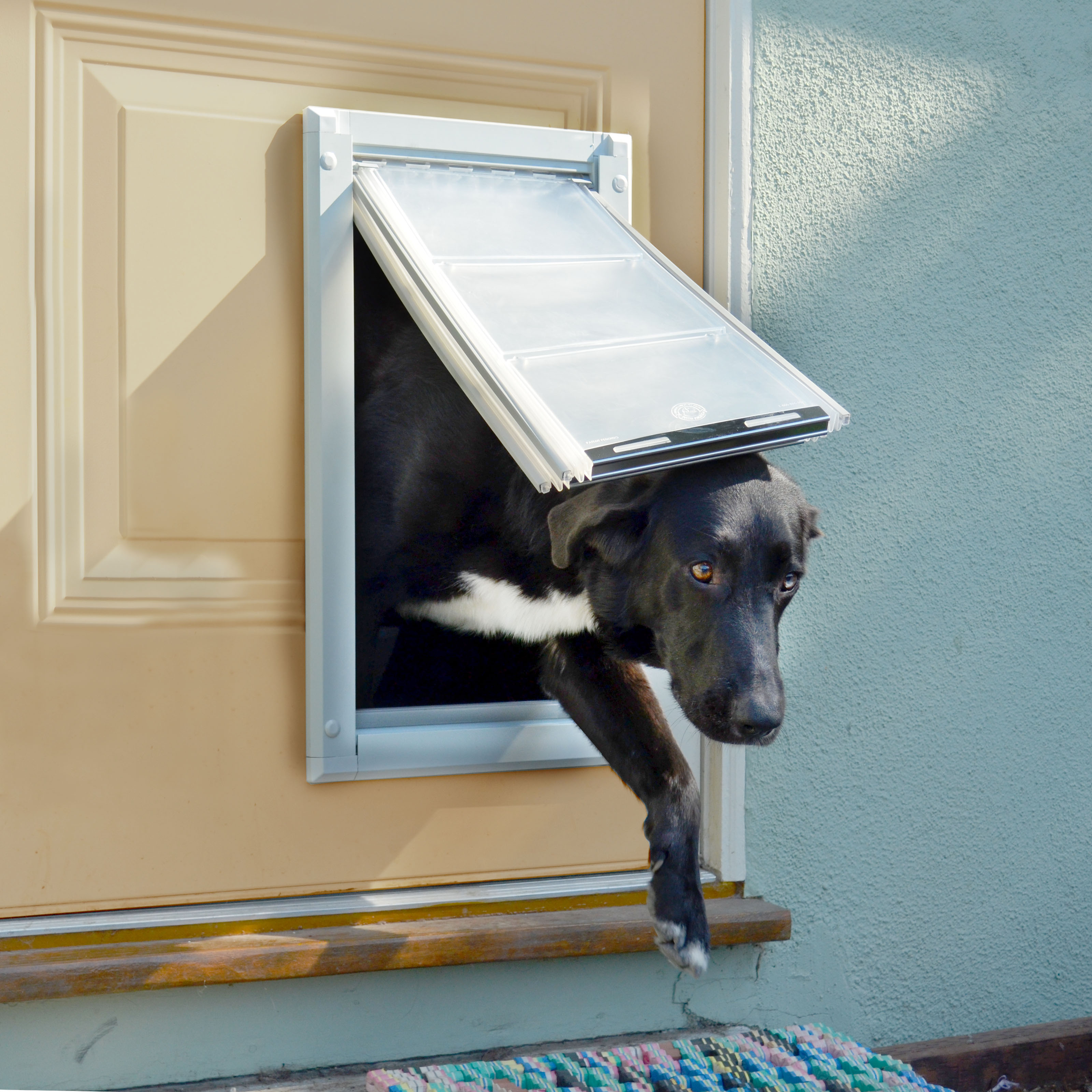 Flaps for fido program gives back to animal rescues newswire for Metal dog door flaps