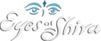 Eyes of Shiva Window and Gutter Cleaning Service