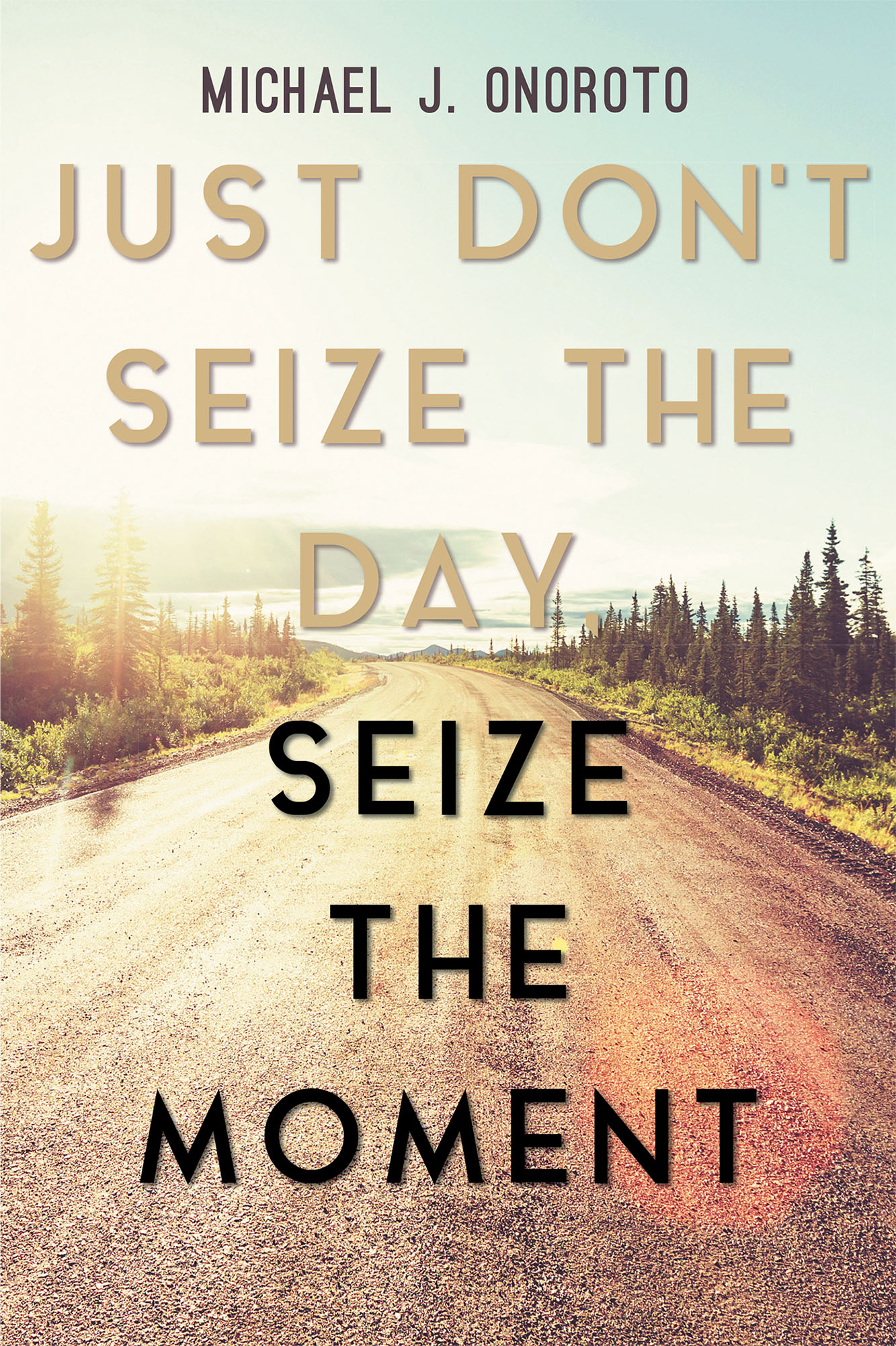 "Michael J. Onoroto's New Book ""Just Don't Seize the Day ..."