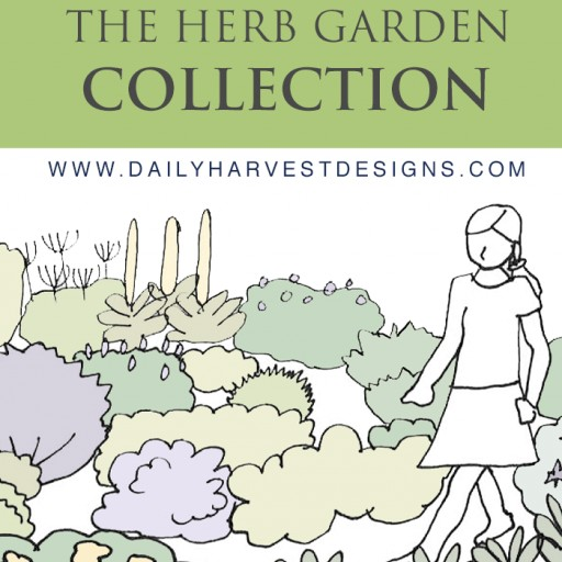 Daily Harvest Designs Releases the Herb Garden Collection: Innovative New Instant Download Garden Designs