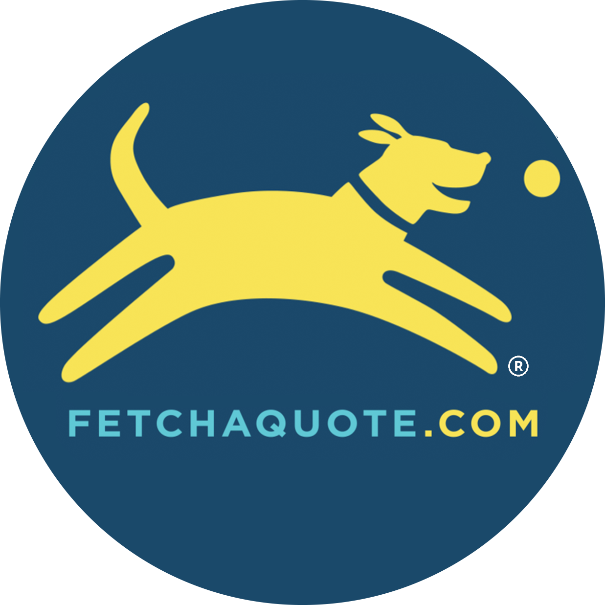Car Insurance Quotes Virginia: Fetch! And ComSoft Dealership Management Software Now