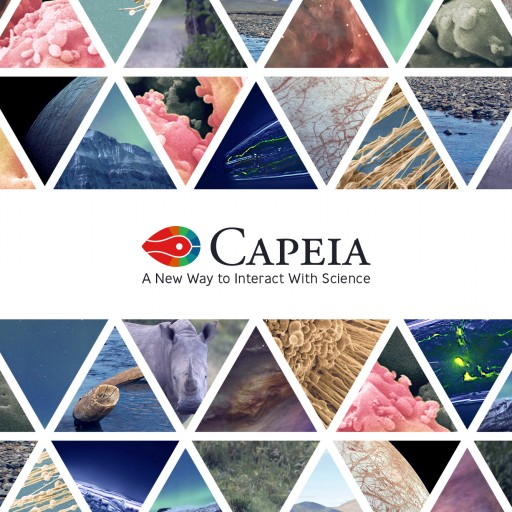 The Science Platform Capeia Introduces a Novel Scoring Algorithm for Monitoring the Impact of Articles