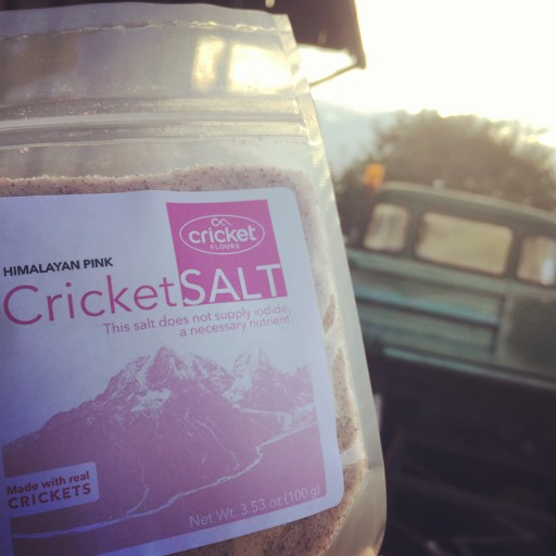 Oregon Company Launches Gourmet Salt on Kickstarter Made With Crickets