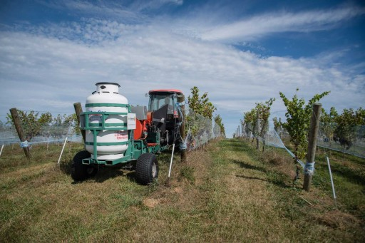 Barrel Oak Winery Eliminated Miticide and Powdery Mildew Treatments, Increased Yield 30 Percent