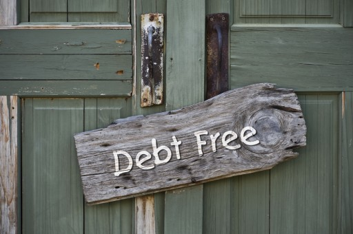 Top 10 Jungle Explains Debt Relief: Your 5 Choices in the Financial Jungle