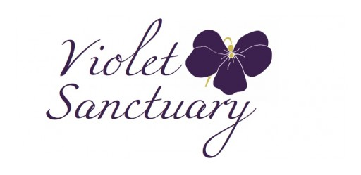 Violet Sanctuary Announces Refreshing New Name and Spectacular Product Line