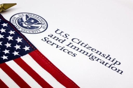 Platinum Immigration Services on Amnesty or Deportation