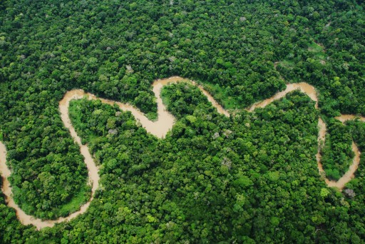 Peru Protects More Than 2 Million Acres of Rainforest by Creating Yaguas National Park